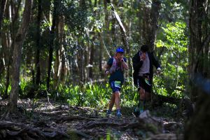 Elephant Trail Race - Accommodation Airlie Beach